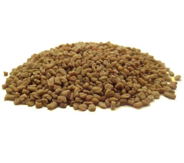 Graines germees de fenugrec