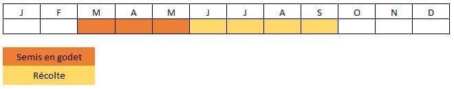 Calendrier cornichon russe