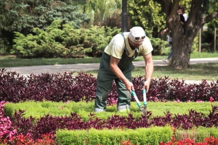 jardinier en tenue